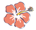 flower_icn